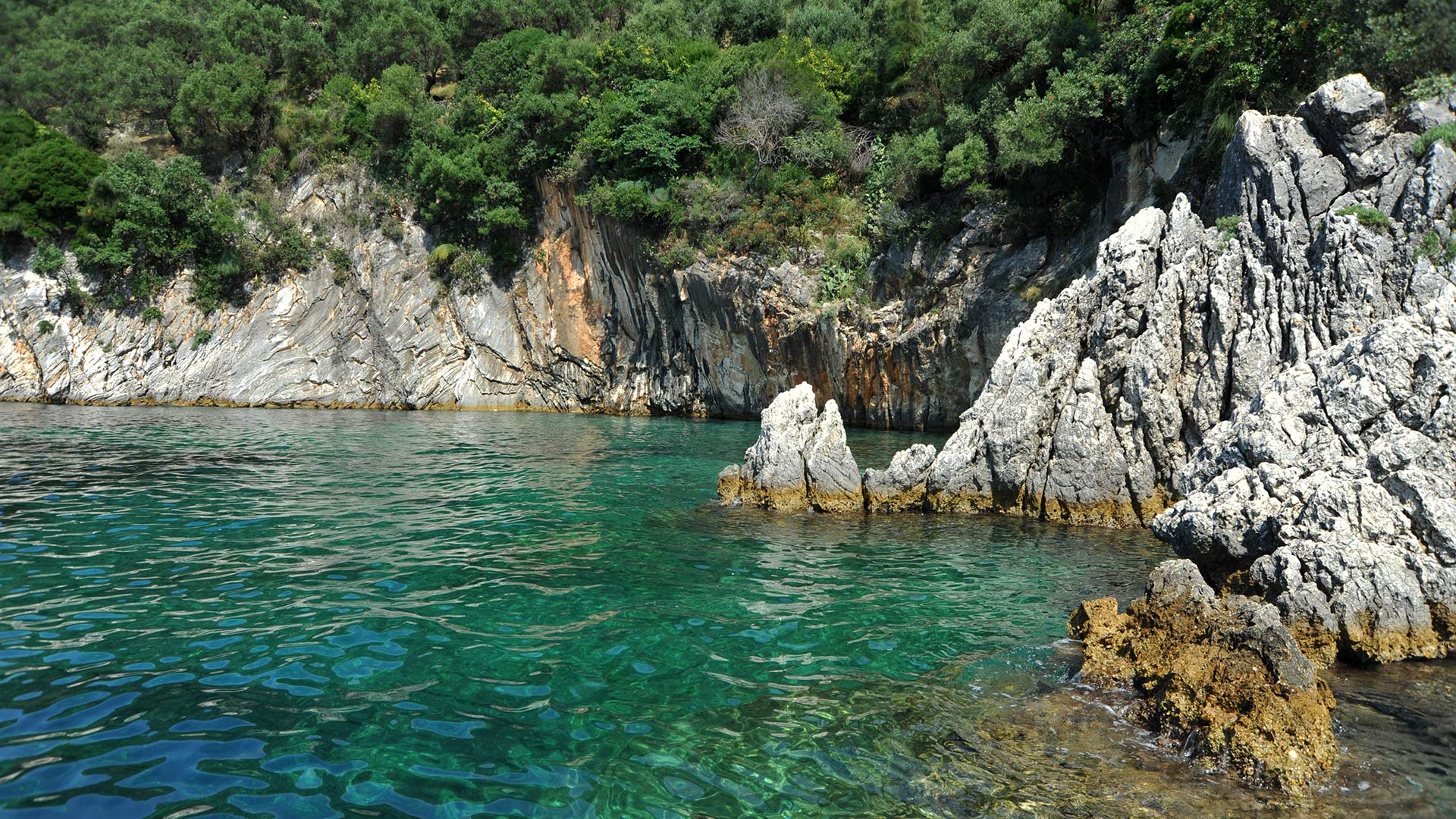 Boat Trips in North Corfu